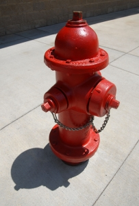 Fire hydrant in a city.