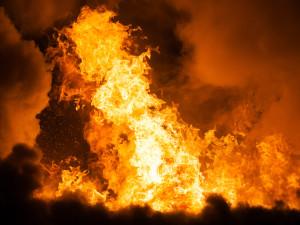 Wild forest fire.