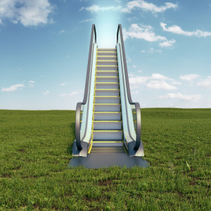 Escalator in the middle of a grassland showing easy toxic mold removal steps.